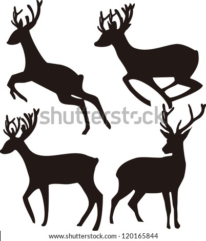 Deer Silhouette on white background