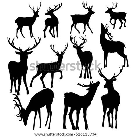 deer silhouette set - vector illustration