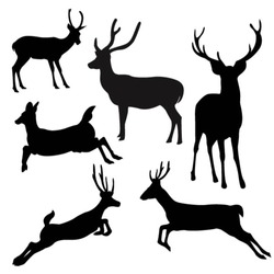 deer silhouette.vector.illustration
