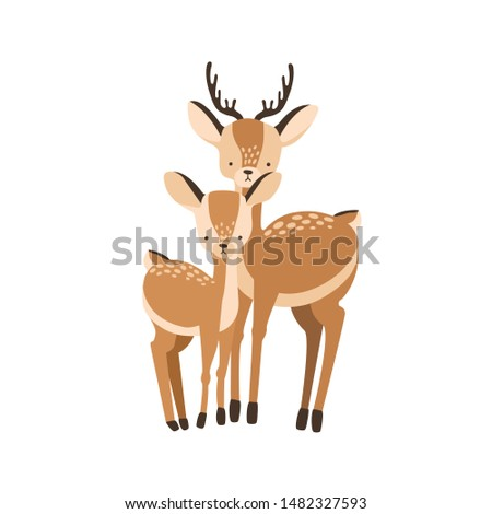Deer with fawn isolated on white background. Family of wild forest herbivorous animals. Chital parent with child or youngling, mother or father and baby. Flat cartoon childish vector illustration. Stockfoto ©