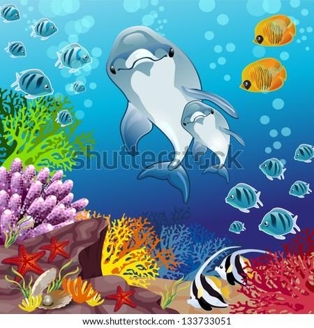 delfini su sfondo marino