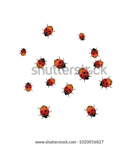 Delicate background with ladybugs. Trendy template for a postcard ...