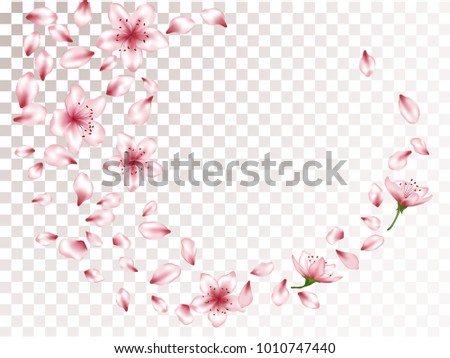 delicate blossom elements