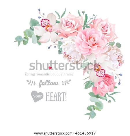 delicate floral vector frame