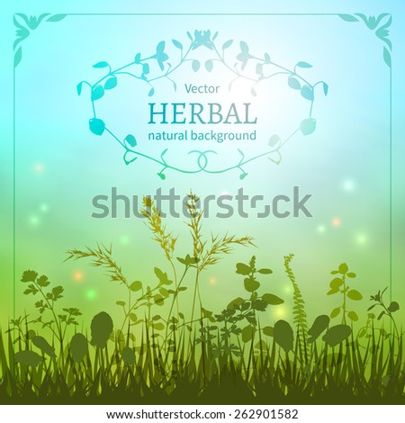 Delicate herbal background with a silhouette of grasses and fireflies bordered decorative floral border.