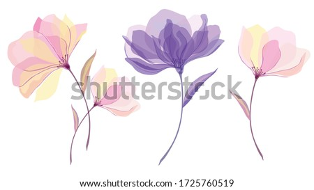 delicate transparent watercolor flowers, cute floral elements, set of beautiful flowers and leaves, translucent vector illustration Foto stock ©
