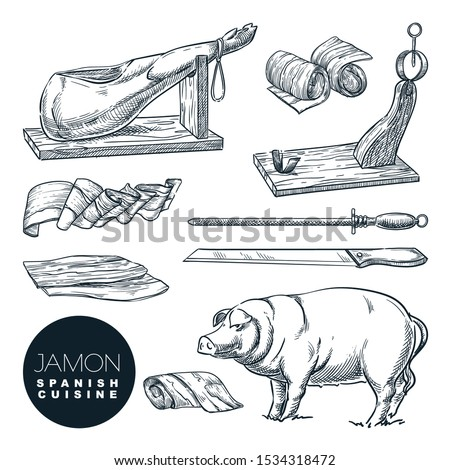 Delicious iberian pork jamon leg and cutting tools. Sketch vector illustration of Spanish gourmet cuisine. Hand drawn delicatessen food isolated design elements.