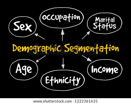 Demographic segmentation mind map flowchart social concept for presentations and reports