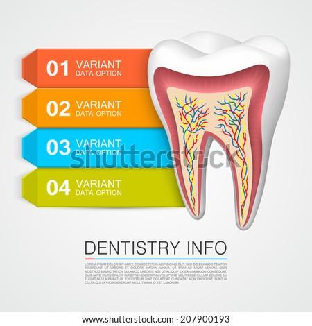 Dentistry info Vector Illustration