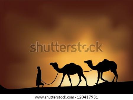desert and  camel
