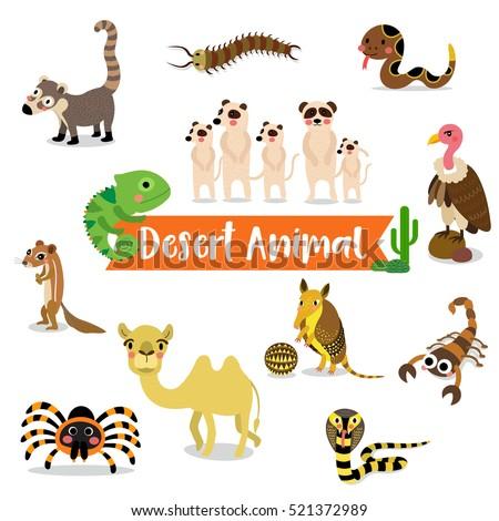 desert animals cartoon on white