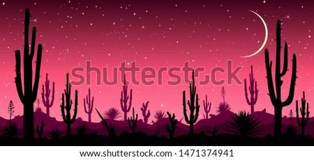 Desert, cacti, stars night. Starry night over the Mexican desert. Silhouettes of stones, cacti and plants. Desert landscape with cacti. Stony desert.