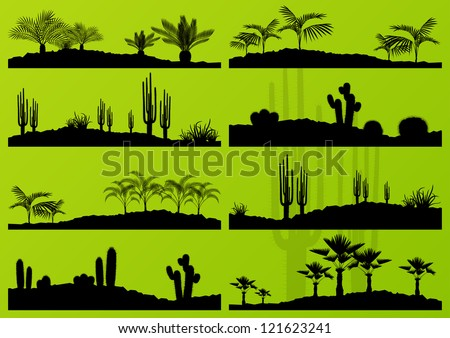 desert cactus plant and exotic