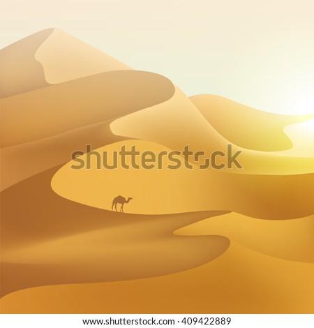 desert dunes sunset landscape