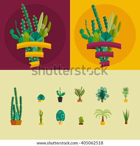 desert flowers and plants