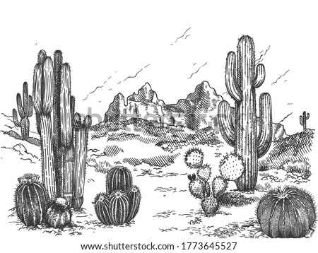 Desert landscape. Hand drawn mexican prairie with plants and blooming cactuses, prickly succulents nature wild west sketch vector background. Scenery with rock and mountain, environment ストックフォト ©