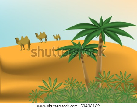 desert landscape with oasis and