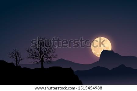 desert night landscape with