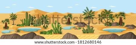 Desert oasis with palms nature landscape scene illustration Foto stock ©