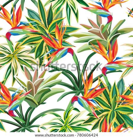 Desert plant cactus tropical flower bird of paradise seamless pattern white background. Beach vector wallpaper