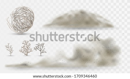 Desert plants and dust, arid climate elements on a white background, tumbleweed and sandstorms