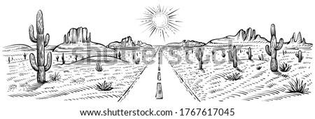 desert road panorama landscape