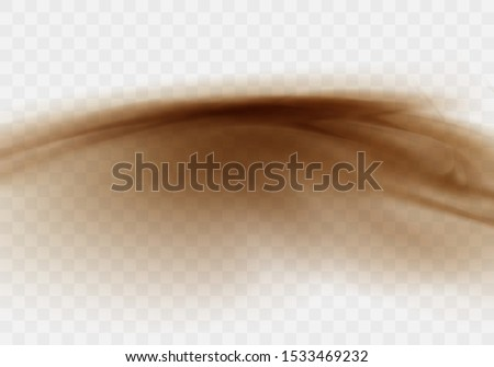 Desert sandstorm, brown dusty cloud or dry sand flying with gust of wind, big explosion realistic texture vector illustration isolated on transparent background