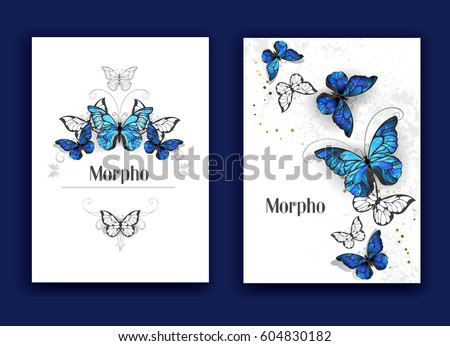 design brochures with blue