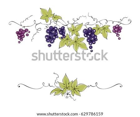 design elements    vine   color