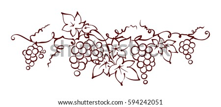 design elements    vine