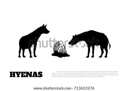 Detail of black hyena silhouette on a white background. African animals. Vector illustration
