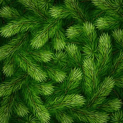 Detailed Christmas tree branches background