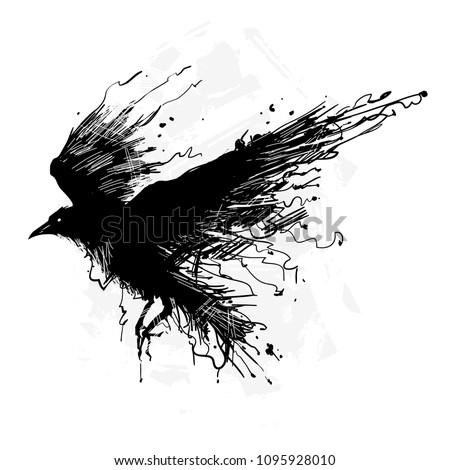 Detailed crows painted in ink on a white background. Crow wings, grunge. A detailed raven with wings. Shades of gray.