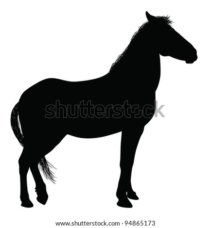 Detailed horse silhouette. Vector eps8