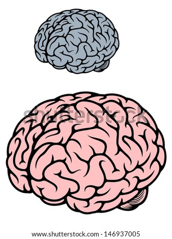 Detailed human brain in gray and red colours isolated on white background or idea of logo. Jpeg version also available in gallery - stock vector