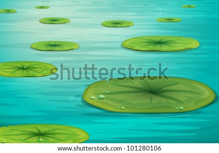 detailed illustration of calm