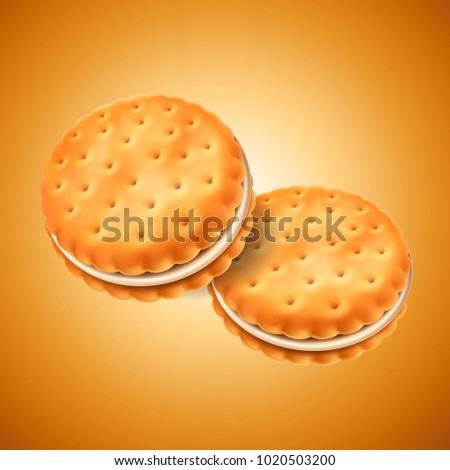 Detailed sandwich cookies or crackers with cream filling. Easy to use in design. Food and sweets, baking and cooking theme. Vector realistic 3d illustration.