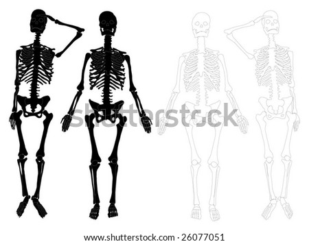 Detailed skeletons (black and white)