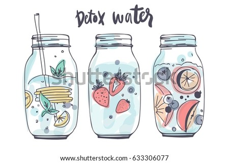 detox water. hand drawn...