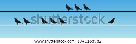 Deviant bird alone in flock, minimal vector illustration design, blue sky background Stockfoto ©