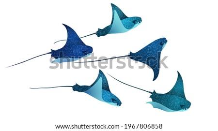 Devilfish marine animals, manta ray fishes, sea creatures set vector illustration. Blue eagle ray fishes, manta ray scuba vector. Eagle or devil fish group, underwater devilfish giant ocean animals. Foto stock ©