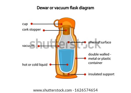 Dewar or vacuum flask fully diagram isolated on white background. Cross section cut away view of a thermos vacuum flask. Diagram showing vacuum flask layers. Dewar flask or thermos. Stock vector