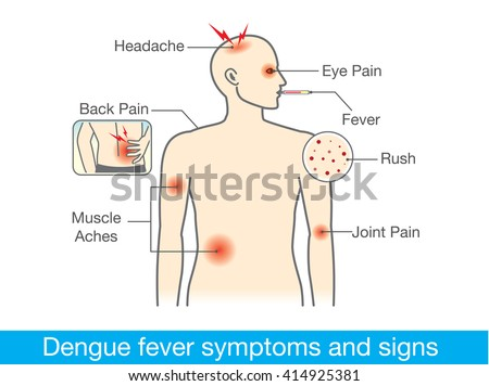 diagram for health check when have dengue fever symptoms ... diagram of fever diagram of parts of the foot #6