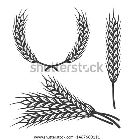 Different angles barley spike for art brush