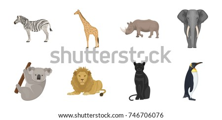 different animals icons in set