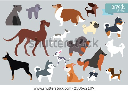 different breeds of dog vector