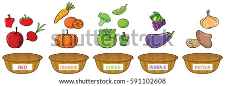 different colors of fruits and