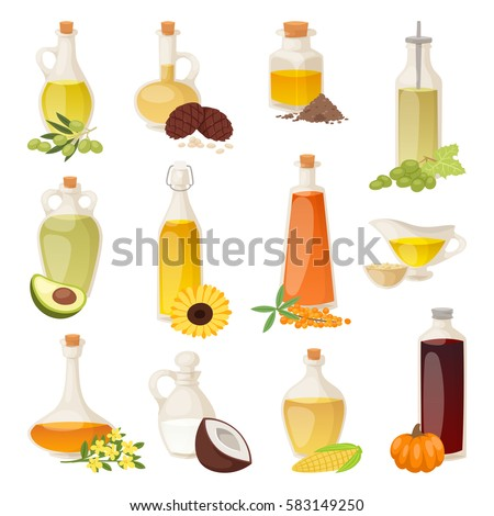 Different food oil in bottles isolated on white with cooking transparent liquid and natural, vegetable, virgin organic healthy oil product liquid container vector illustration.