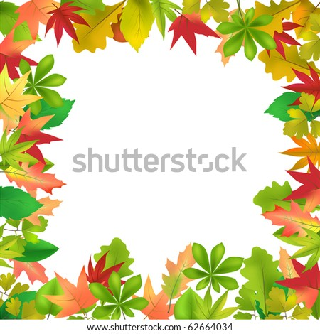 Different forest leaves frame