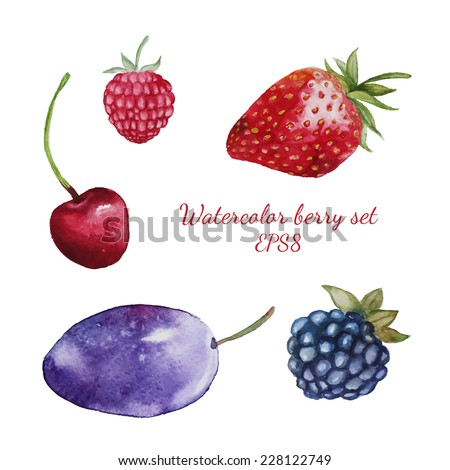 different fresh berry set